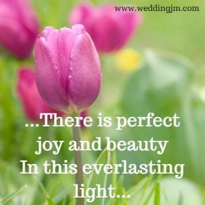 There is perfect joy and beauty in this everlasting light.